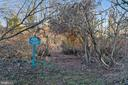 Walking trails - 3417 HIDDEN RIVER VIEW RD, ANNAPOLIS