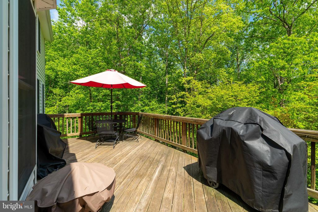Tons of outdoor living space - 204 SAIL CV, STAFFORD