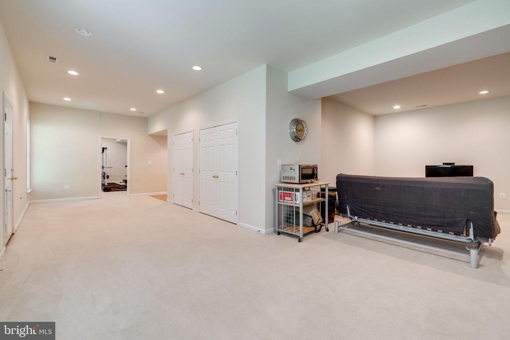Lower level Recreation Room - 204 SAIL CV, STAFFORD