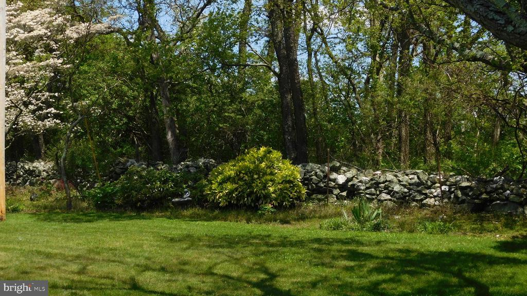 Landscaped backyard  with fully lined trees - 7839 RIDGE RD, FREDERICK