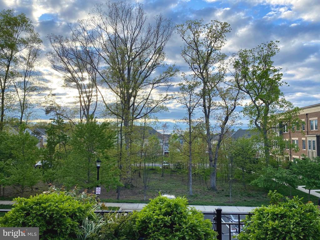 Gorgeous View from Deck - 22912 BOLLINGER TER, BRAMBLETON