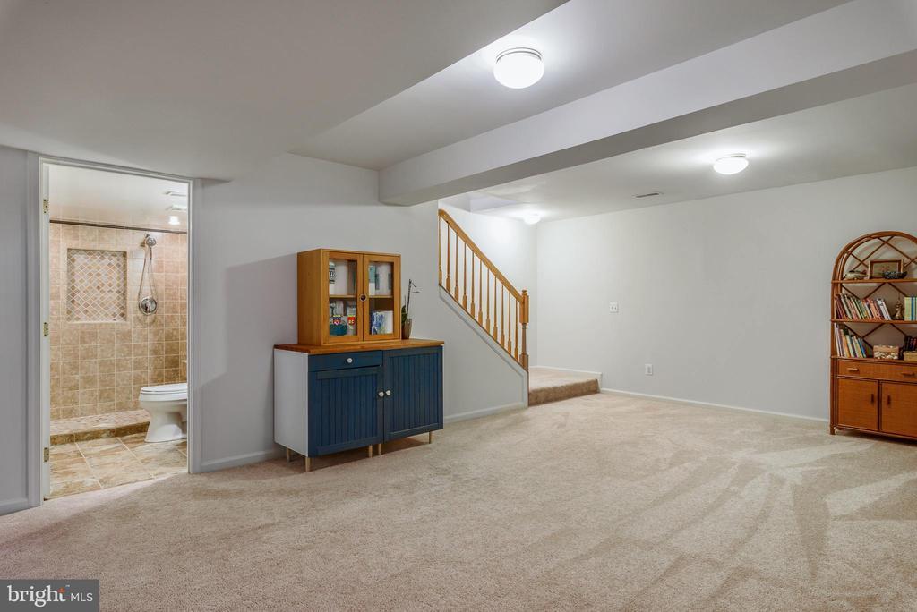 basement - 20436 RIVER BANK ST, STERLING