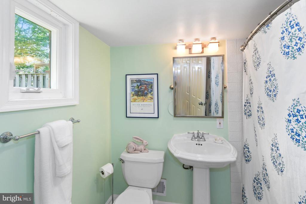 Full bath #2 on lower 1 - 1065 PALMER PL, ALEXANDRIA