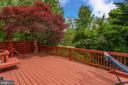 Deck Overlooking Trees - 1542 DEER POINT WAY, RESTON