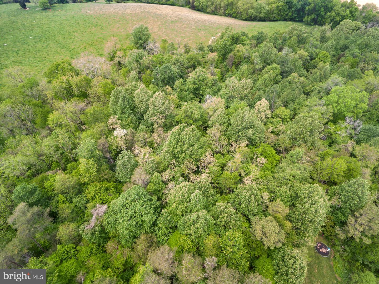 Land for Sale at Somerset, Virginia 22972 United States