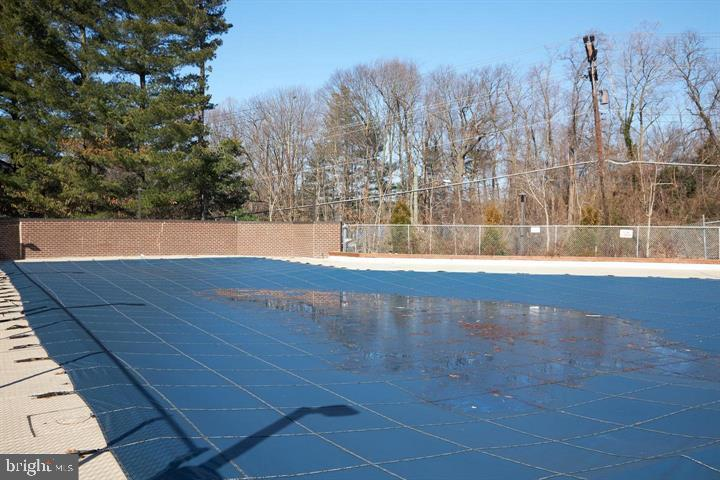 Outdoor Swimming Pools Surrounded by Parkland - 3800 POWELL LN #PH 30, FALLS CHURCH