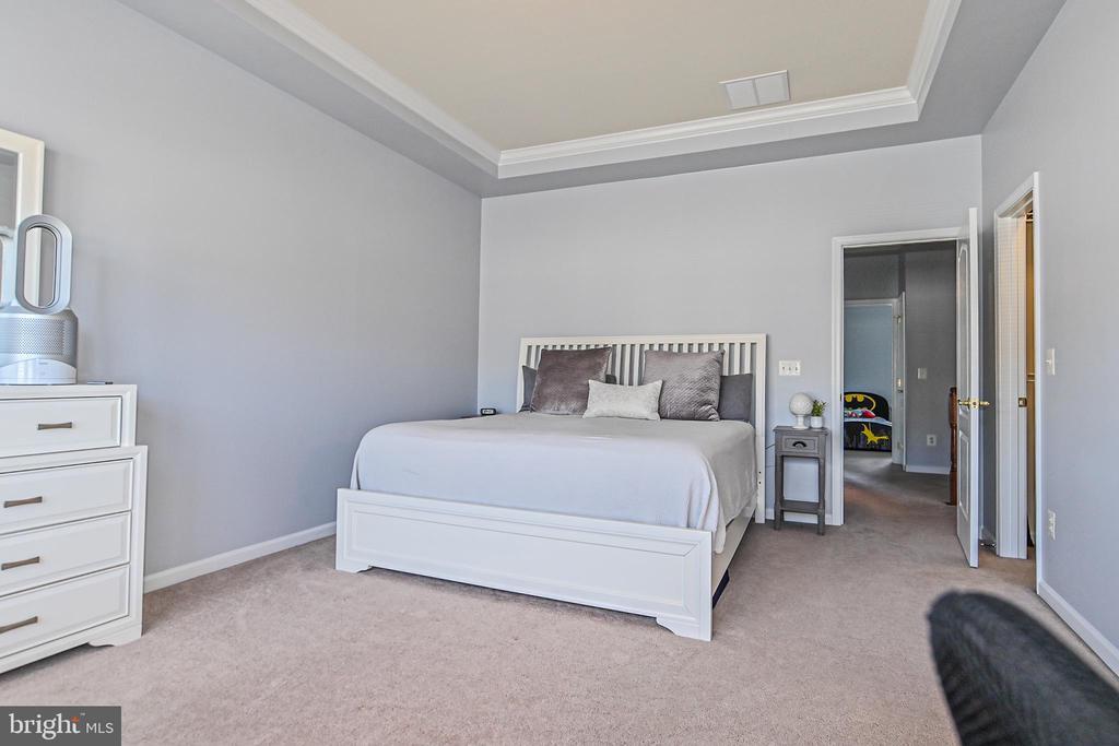 Master Bedroom with walk-in closet - 22944 ROSE QUARTZ SQ, BRAMBLETON
