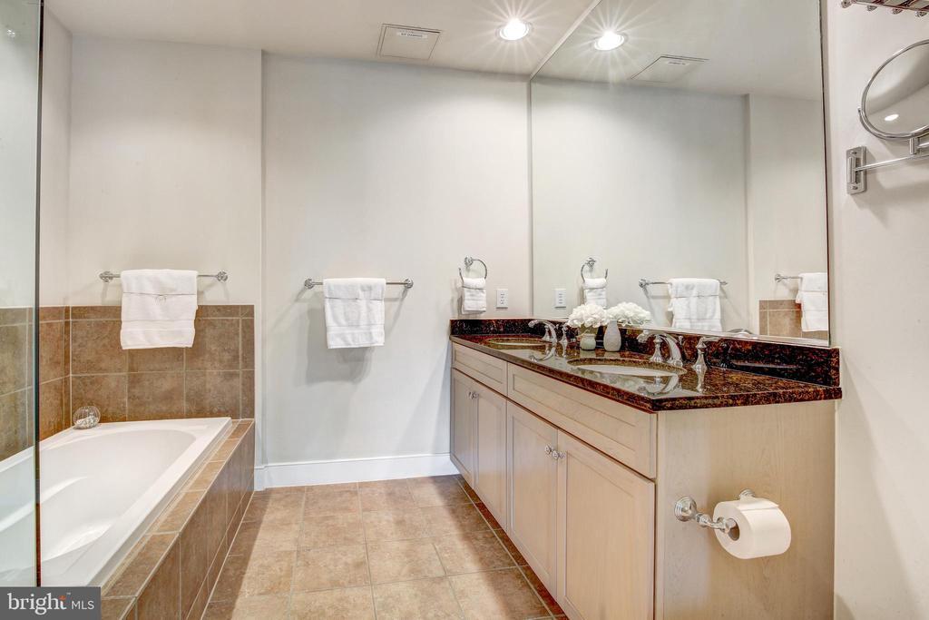 Master Bathroom - 66 FRANKLIN ST #503, ANNAPOLIS