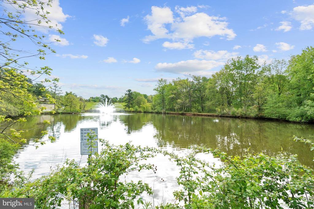 Community Views (3 of 3) - 10100 LITTLE POND PL #1, MONTGOMERY VILLAGE