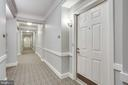 Designer Hallways - 20505 LITTLE CREEK TER #203, ASHBURN