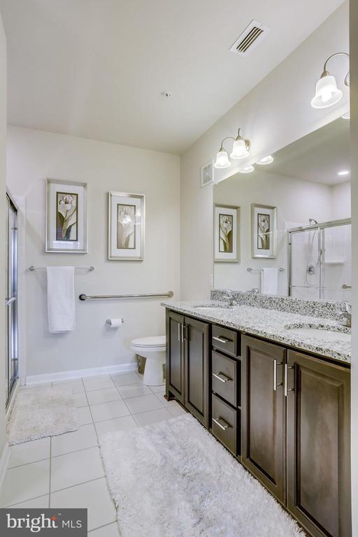 Master Bath has Grab Bars & New Higher Toilet - 20505 LITTLE CREEK TER #203, ASHBURN