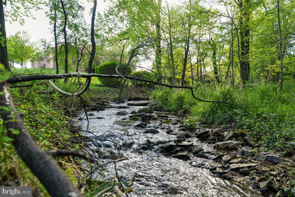 Stream flows along back of property below pool - 6072 WHITE FLINT DR, FREDERICK