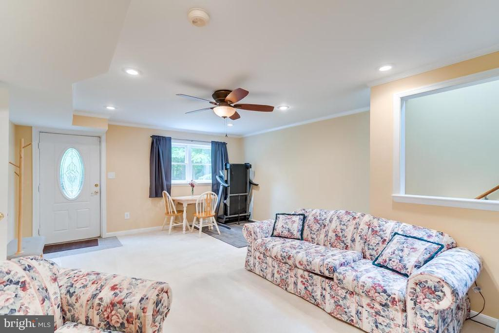 Family Room on Lower Level of Guest House. - 1065 MOUNTAIN VIEW RD, FREDERICKSBURG