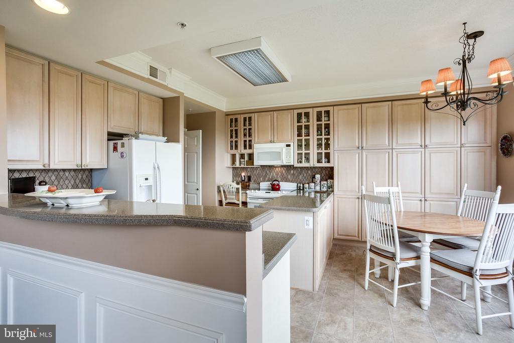 Kitchen - 19355 CYPRESS RIDGE TER #1118, LEESBURG