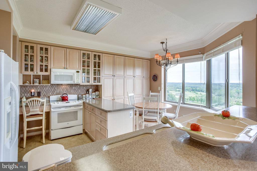 Kitchen  with wonderful views - 19355 CYPRESS RIDGE TER #1118, LEESBURG