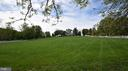 Gorgeous Front Yard - 3001 GILLIS FALLS RD, MOUNT AIRY
