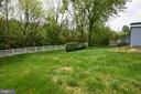 Side Yard with Raspberry Bushes - 3001 GILLIS FALLS RD, MOUNT AIRY