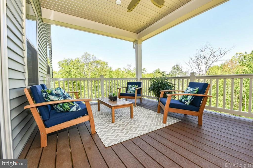 Imagine unwinding at the end of the day! - 9687 AMELIA CT, NEW MARKET
