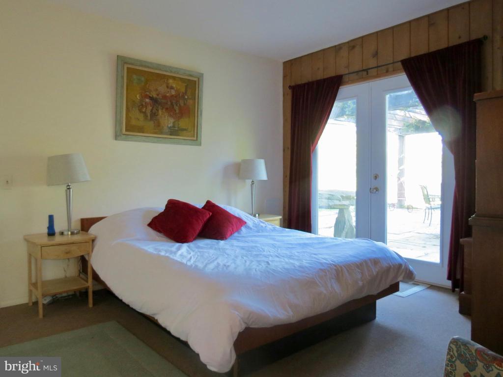 Master Bedroom on the lower level - 140 HORSESHOE HOLLOW LN, WASHINGTON