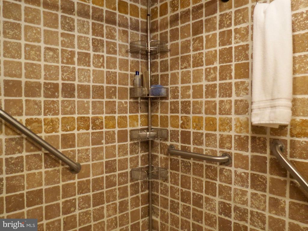 Main level Bath has walk or roll in access shower - 140 HORSESHOE HOLLOW LN, WASHINGTON