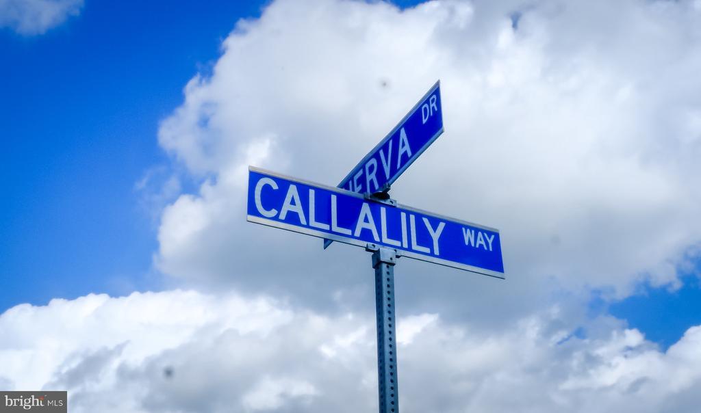- 42610 CALLALILY WAY, BRAMBLETON