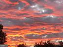 Beautiful Sunsets - 501 SLATERS LN #703, ALEXANDRIA