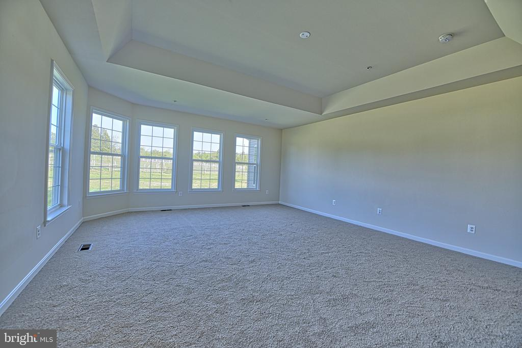Master Bedroom - Gorgeous Windows!  Tray Ceiling - 11202 KING GALLAHAN CT, CLINTON