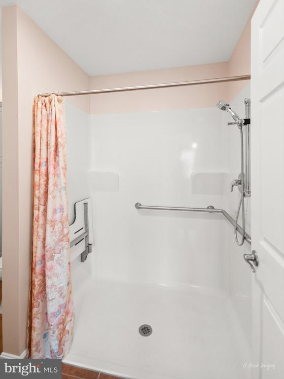 roll-in/walk in shower with grab bar - 103 S ADAMS ST, WOODSBORO