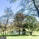 Beutiful private pond for personal use. - 37175 ADAMS GREEN LN, MIDDLEBURG