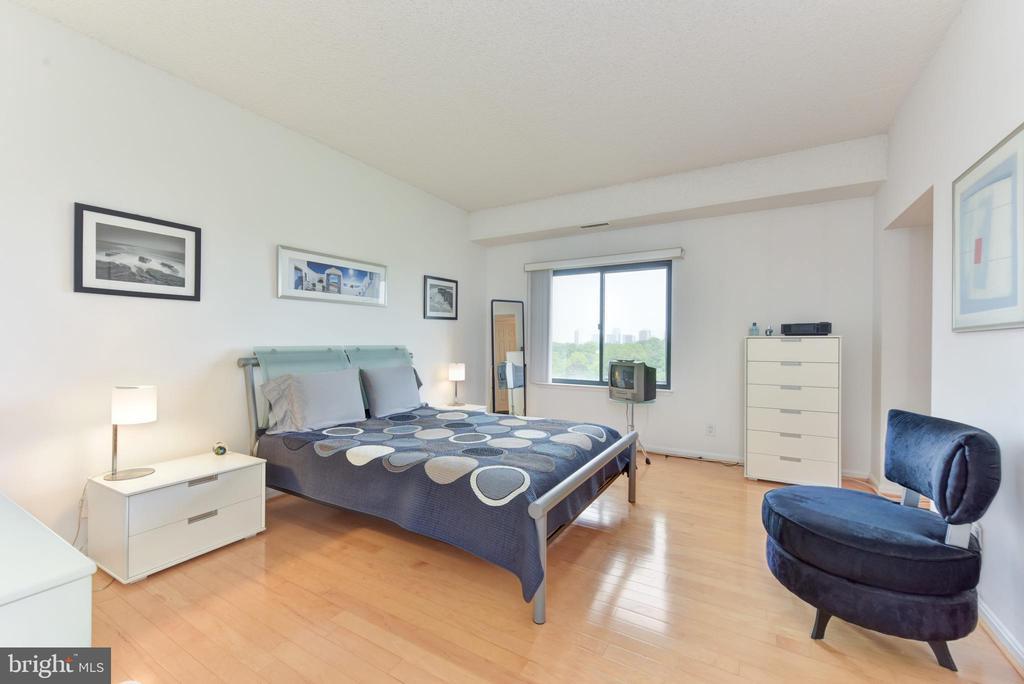 Master Bedroom En Suite w Spectacular Views - 3800 POWELL LN #PH 30, FALLS CHURCH