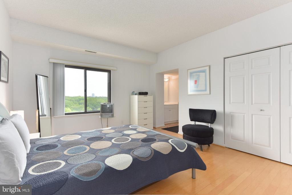 Master Bedroom Includes Plenty of Closet Space! - 3800 POWELL LN #PH 30, FALLS CHURCH
