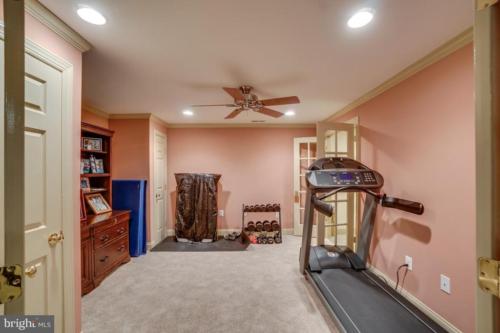 Gym - View 1 - 43671 MINK MEADOWS ST, CHANTILLY