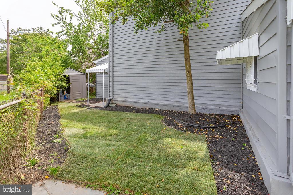 Yard outside Den entry - 5362 HAYES ST NE, WASHINGTON