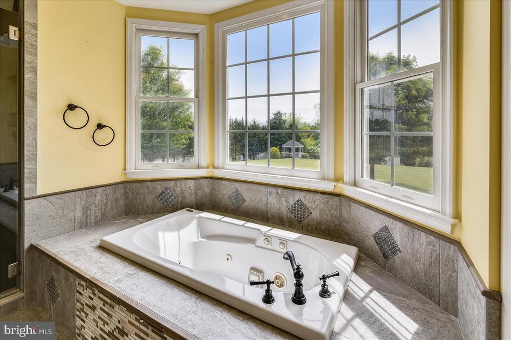 Whirlpool tub in bay window with view to the pond - 2040 SALEM CHURCH RD, STEPHENS CITY