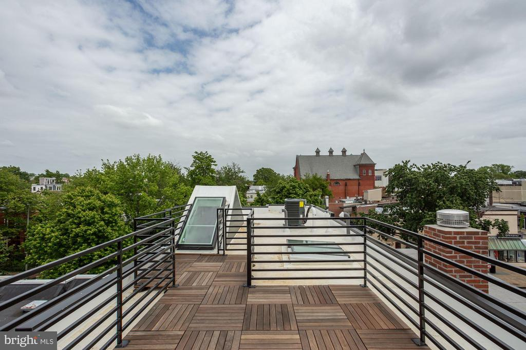 Expansive Rooftop Deck - 802 10TH ST NE #2, WASHINGTON