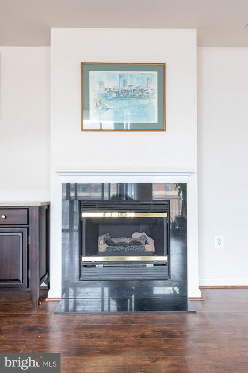 Fireplace - 11710 OLD GEORGETOWN ROAD #1521, NORTH BETHESDA