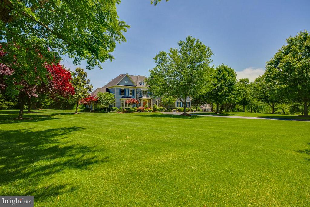 Lush front yard - 17072 SILVER CHARM PL, LEESBURG