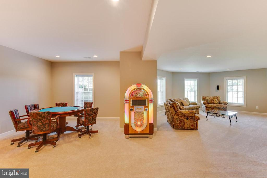 Plenty of natural sun light in the lower level - 17072 SILVER CHARM PL, LEESBURG