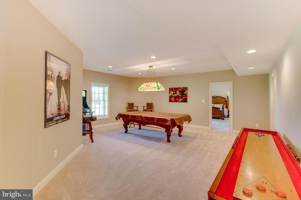 Game room lower level - 17072 SILVER CHARM PL, LEESBURG