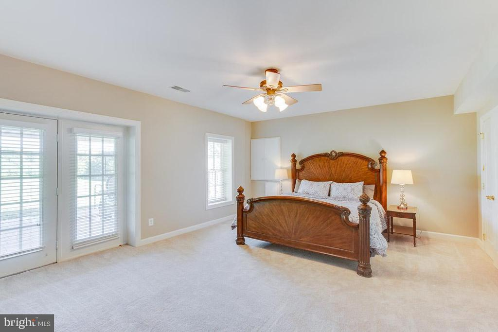 Spacious lower level bedroom - 17072 SILVER CHARM PL, LEESBURG