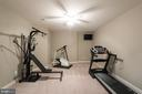 Exercise room in lower level - 17072 SILVER CHARM PL, LEESBURG