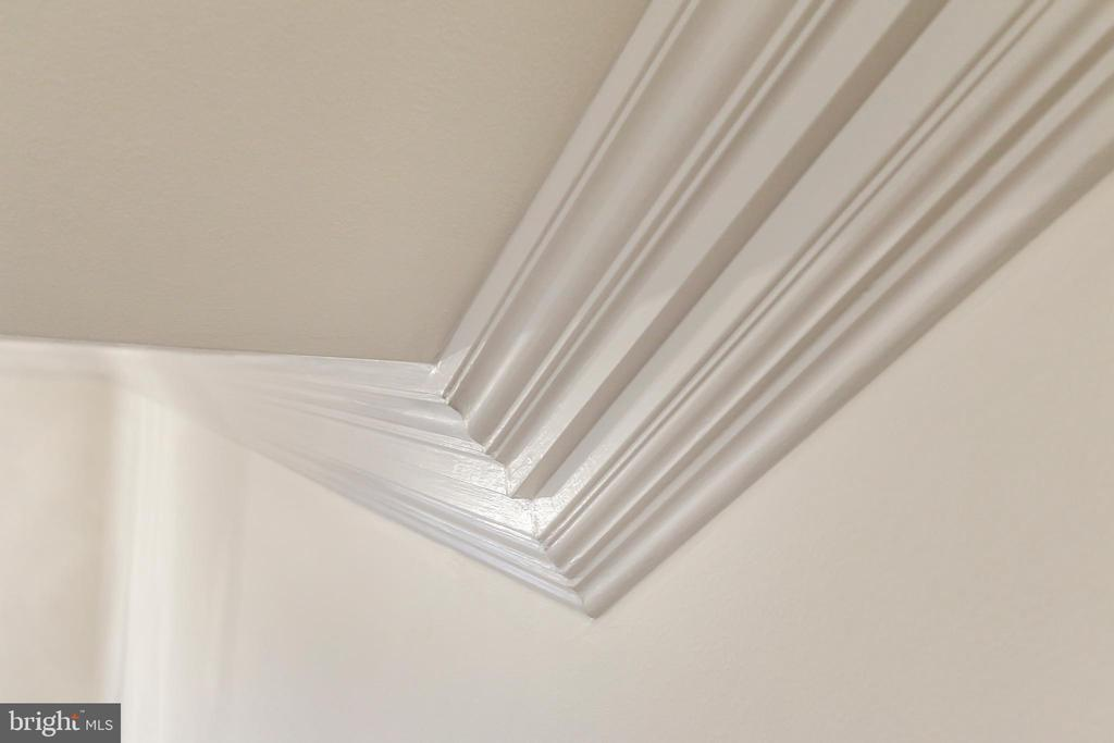 Tripple Crown Molding throughout - 2705 WOODLEY RD NW, WASHINGTON