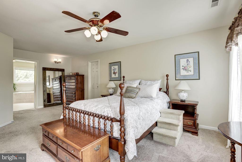 Master Bedroom - 4811 WALNEY KNOLL CT, CHANTILLY