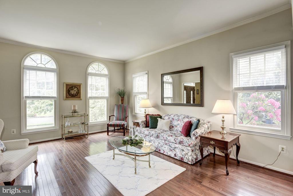 Bright Living Room - 4811 WALNEY KNOLL CT, CHANTILLY