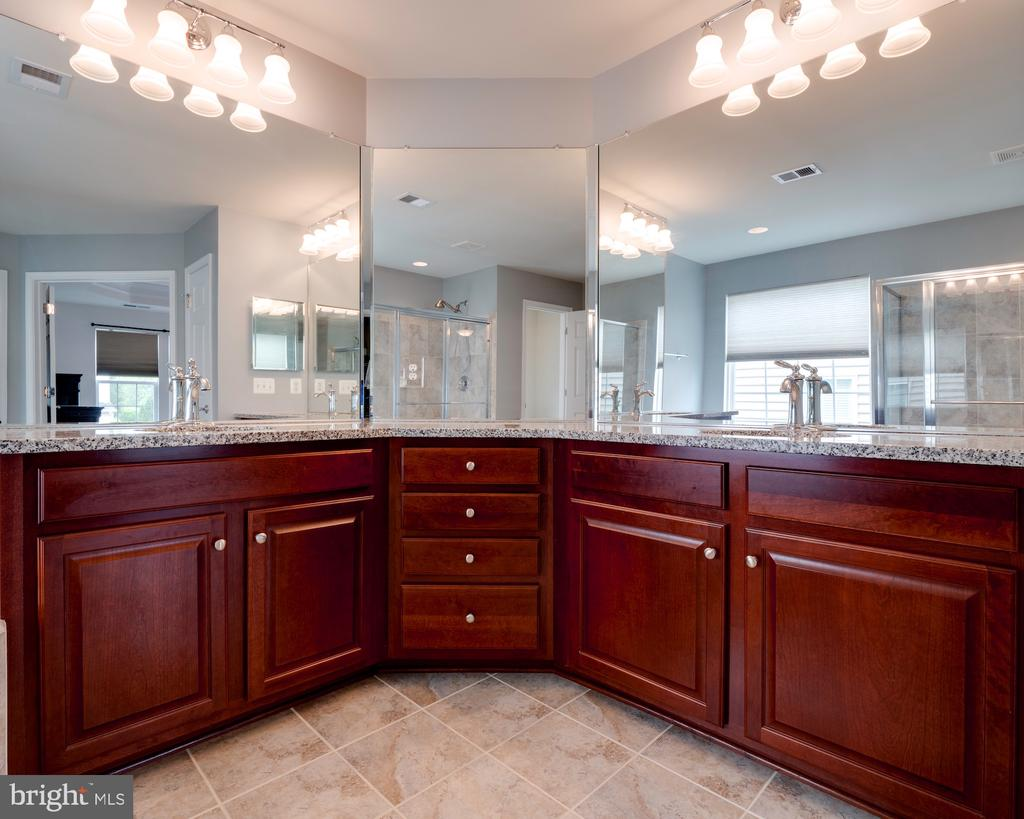 Master bth w/ upgraded counters and fixtures - 42610 CALLALILY WAY, BRAMBLETON