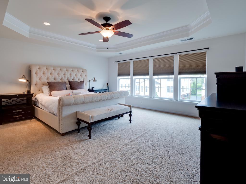 Master Bdrm w/ upgraded tray ceiling - 42610 CALLALILY WAY, BRAMBLETON