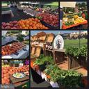 Brambleton Farmers Market - 42610 CALLALILY WAY, BRAMBLETON