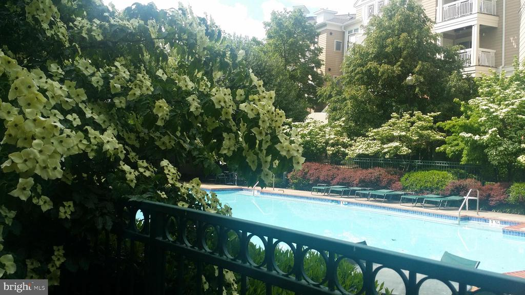 Great pool to relax by - 12913 ALTON SQ #309, HERNDON