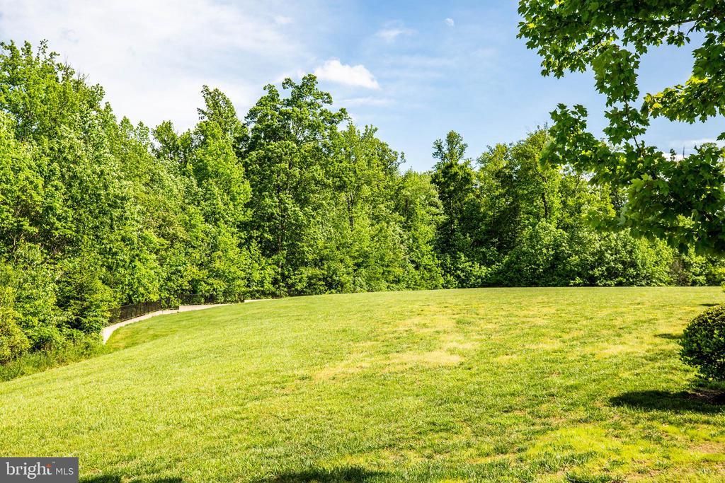 Large, open play field. - 3 MOUNT ARARAT LN, STAFFORD