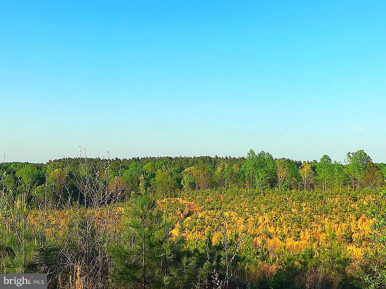 土地 為 出售 在 Richardsville, 弗吉尼亞州 22736 美國